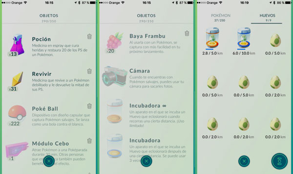 Pokémon GO : Items